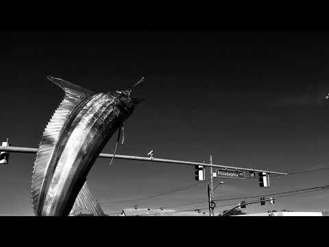 Ocean City, MD in Noir (2017)