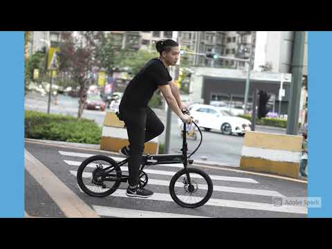 fiido-d4s-36v-250w-20-inches-folding-moped-bicycle-25km/h-top-speed-80km-mileage-range-electric-bike