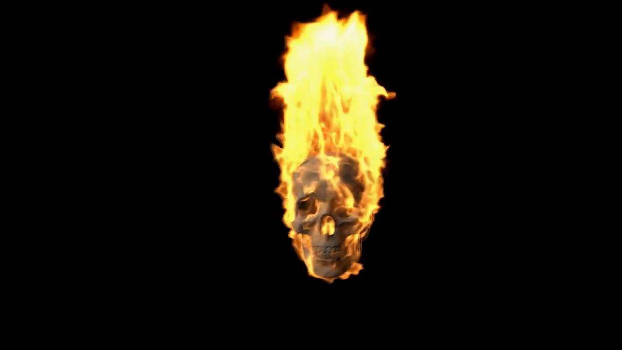 Fire Skull Animation Effect Green Screen ( Link in ...