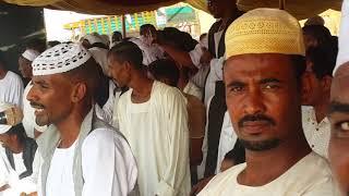 فضل الله زواج جمال علوي حلفا الجديده قريه 5 عرب رقم(1)