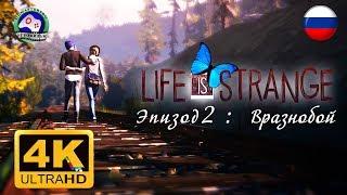 Life is Strange Эпизод 2 Вразнобой 4K 60FPS ИГРОФИЛЬМ 18+ русская озвучка сюжет фантастика