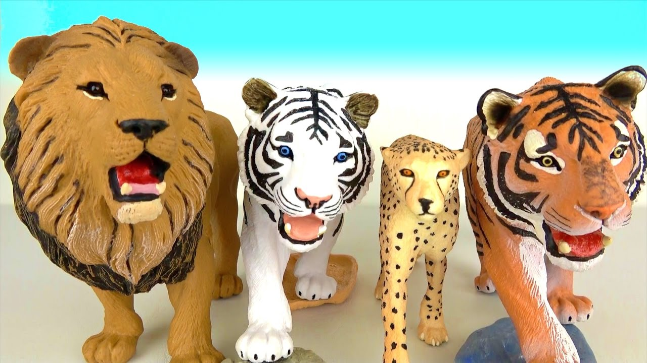 learn animal names and sounds lions tigers cheetahs lion king