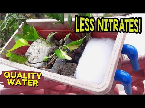 How to make Overhead Aquarium Sump Filter | Top Filter Less Nitrates!