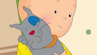 Caillou en Français | Où est Gilbert? | conte pour enfant | dessin animé en entier | NOUVEL ÉPISODE