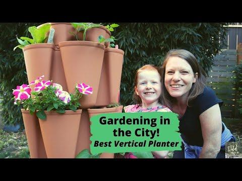 Gardening in the City: GreenStalk Vertical Planter with Kids   Wild Tales of…Garden Tour & Update!