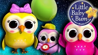 Learn with Little Baby Bum | A Wise Old Owl | Nursery Rhymes for Babies | Songs for Kids