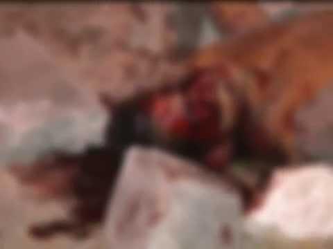 Suspeito estuprar mulher na Lagoa Mundaú é morto a pedradas