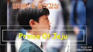 열대야 속 오연준 음악감상- Prince Of Jeju
