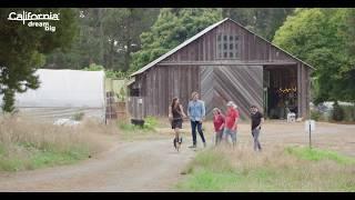 Curtis Stone in Mendocino County: Fortunate Farm