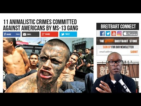 """Trump Was Right About MS13 """"Animals"""" Remarks And Here's Why"""