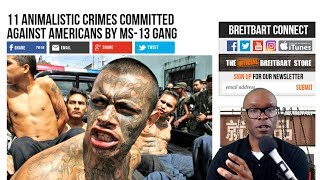 "Trump Was Right About MS13 ""Animals"" Remarks And Here's Why"