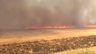 Поля горят под Краснодаром и в районе станицы Старокорсунской