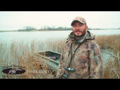 Hunting Diver Ducks, Waterfowl Hunting Outfitter, Manitoba Canada
