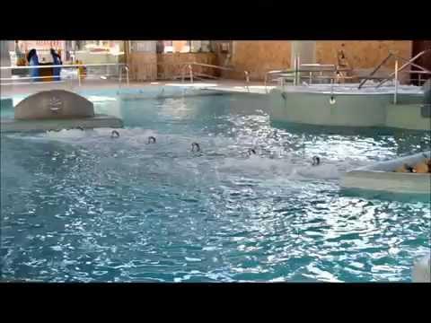 Balneario de Archena - Archena baños murcia españa  - Roman baths spain SPA  Jacuzzi