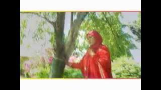 Nurwahida MD - Ibu Tiara