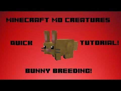 Minecraft Mo Creatures Bunny Breeding Tutorial Youtube