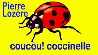 Coucou! coccinelle de Pierre Lozère