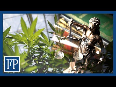 Cannabis companies face