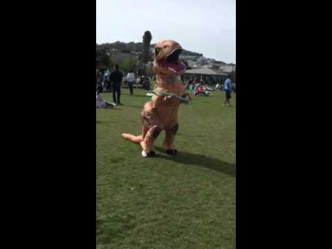 Hula Hooping T. Rex