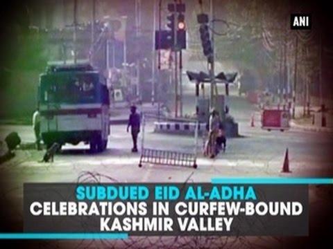 Subdued Eid al-Adha celebrations in curfew-bound Kashmir Valley - ANI News