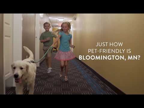 Travel Guide Bloomington, Minnesota, United States -Pet-Friendly Hotels in Bloomington, MN