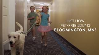 Travel guide bloomington, minnesota, united states -pet-friendly hotels in mn