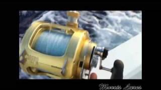 koolina oahu fishing 200 lb ahi 19