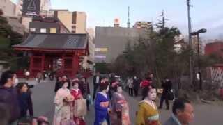 振り袖 着物が綺麗です 2013年 豆撒きです 節分会です浅草 浅草寺の...