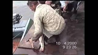 видео Ахтуба - история одной поездки