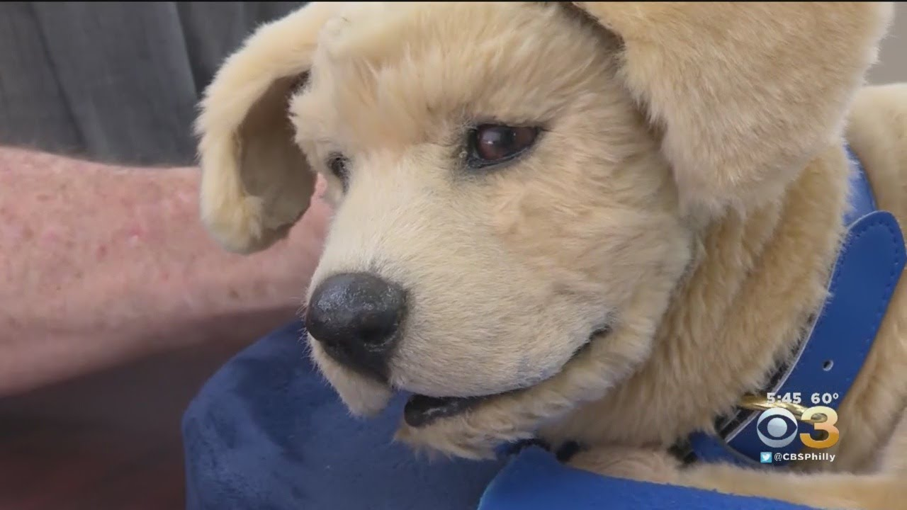 Robot Therapy Dogs Benefiting Those Who Can't Care For Pet