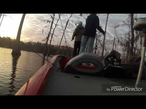 March 4th, 2017 B.O.S.S. Tournament on Lake Bistineau