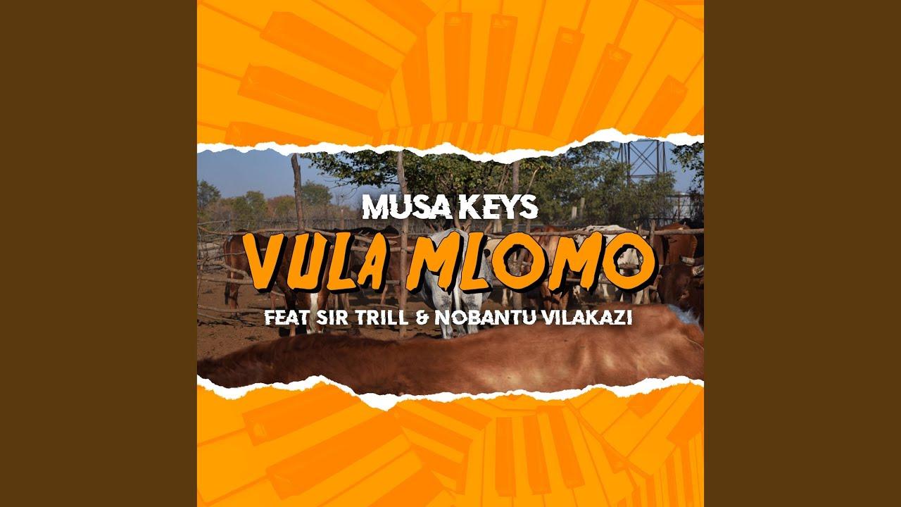 Download Vula Mlomo