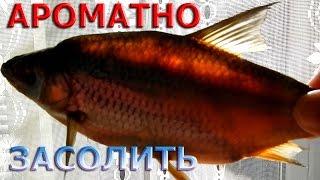 видео Солим рыбу дома: совет по засолке