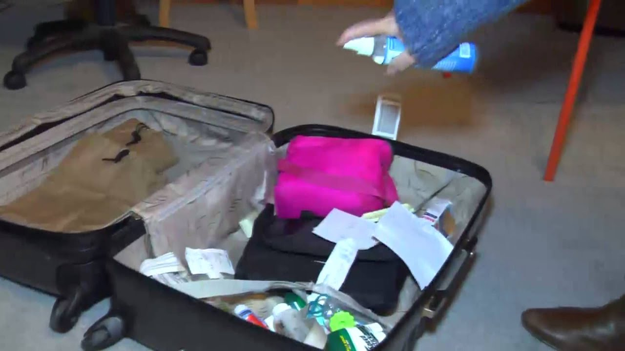 How to Remove Smell from Your luggage and Get Rid of Odor in Your