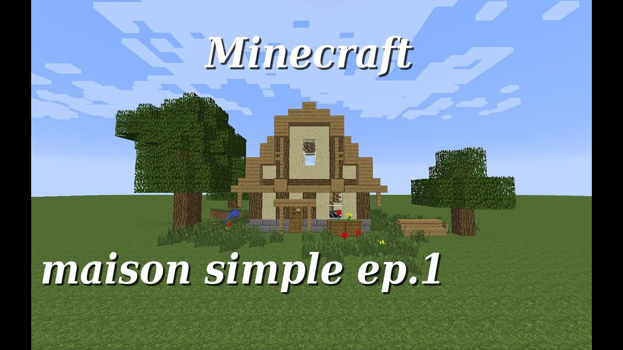 Image gallery maison simple for Maison facile minecraft