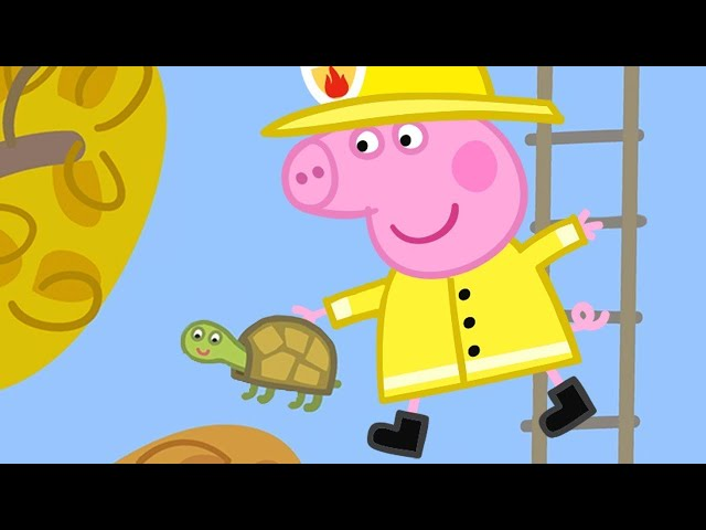 Peppa Pig Français 🐢 Peppa sauve Titine la Tortue | Dessin Animé Pour Bébé
