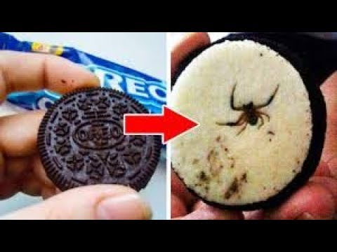 WORST Things Found in Food