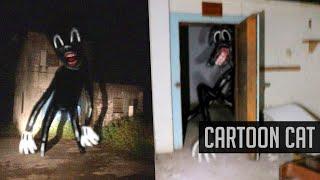 The Lore of Cartoon Cat