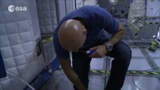 What Jobs Does an Astronaut Do in Space? | ESA Science HD Video