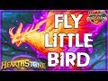 HEARTHSTONE 🌟 FLY LITTLE BIRD | PYROS SECRET MAGE Deck Tech | Ungoro Furo Legend