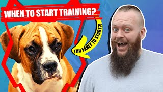 When Should I Start Training My BOXER PUPPY?