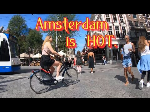 4K. Amsterdam cycling.      The streets of the Jordaan. Summer 2019.