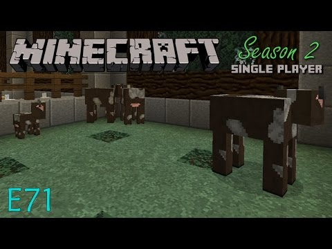 Minecraft LP S2 E71 - Professional Animal Wrangler