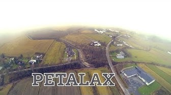 Exploring Petalax from above