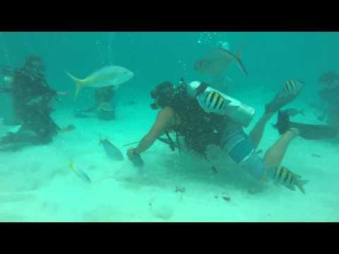 Grand Cayman Dive Oct'15