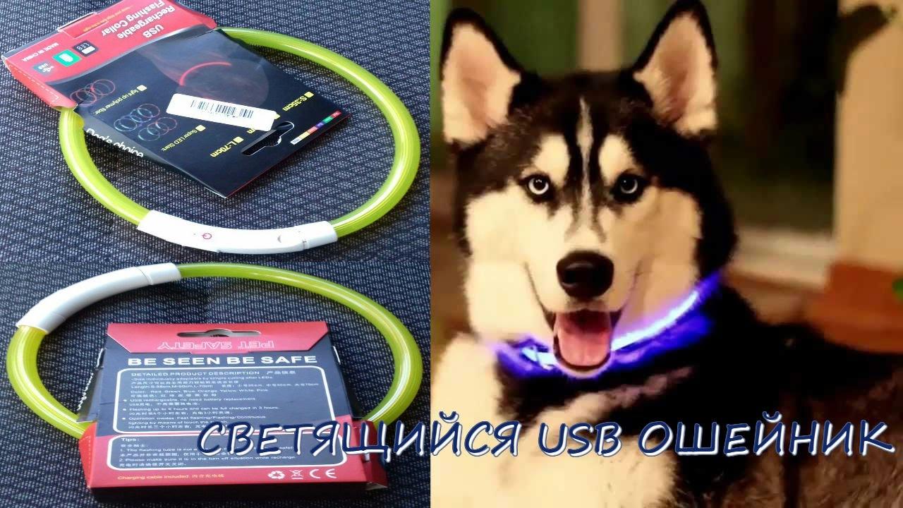 Светодиодный LED ошейник для животных (Светящийся ошейник для .