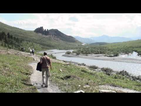 Denali National Park, visiting the public areas