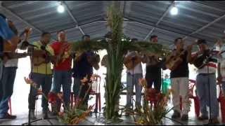 Velorio de Cruz de Mayo en Cabudare
