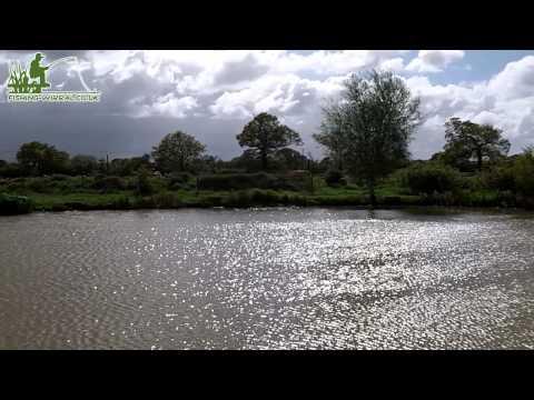 Fishing-Wirral.co.uk: Four Oak's Fishery