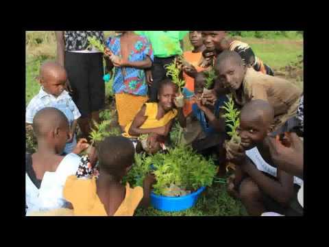 Kasongo -Odingo Fundi